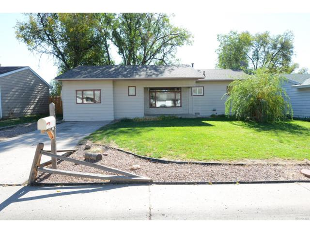 137 Jasper Drive, Colorado Springs, CO 80911 (#5782917) :: The Thayer Group