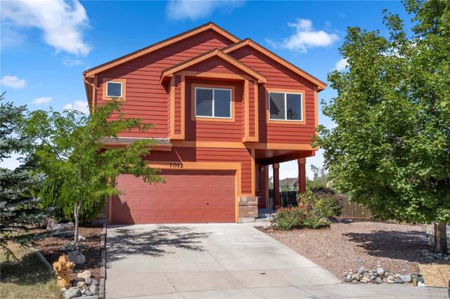 7012 Climbing Rose Court, Colorado Springs, CO 80922 (MLS #5783133) :: 8z Real Estate