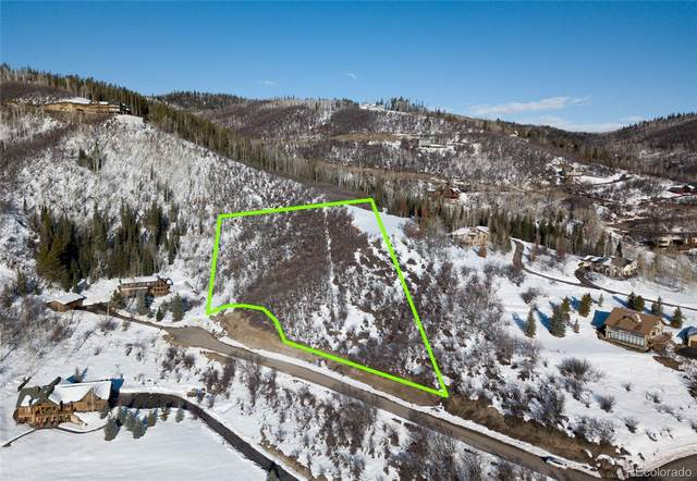 30870 Fawn Lane, Steamboat Springs, CO 80487 (#5785480) :: HomeSmart Realty Group
