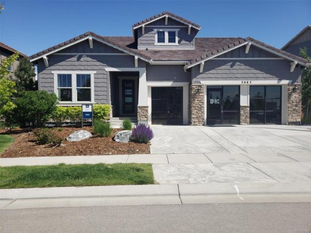 3085 Blue Mountain Drive, Broomfield, CO 80023 (#5786511) :: The HomeSmiths Team - Keller Williams