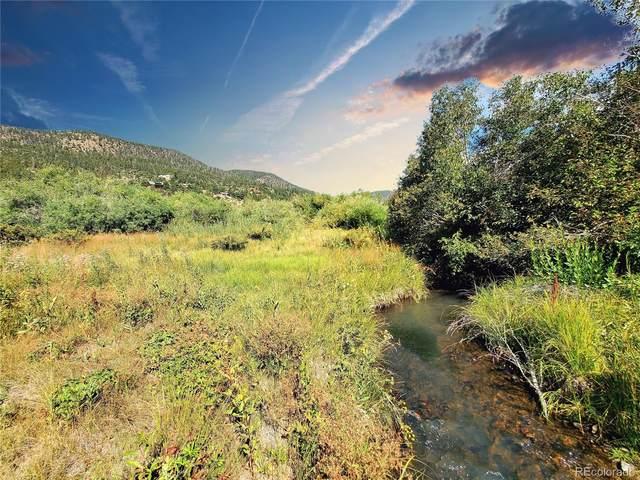 88 N Alder Creek Lane, South Fork, CO 81154 (MLS #5788335) :: Wheelhouse Realty