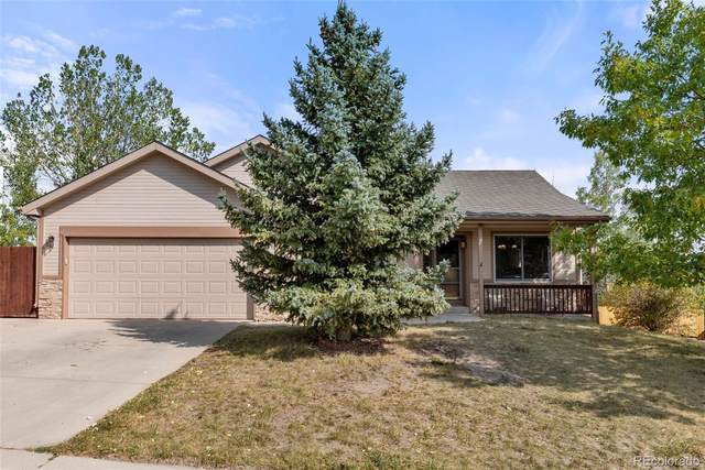 254 Candletree Circle, Monument, CO 80132 (#5789865) :: The Harling Team @ Homesmart Realty Group