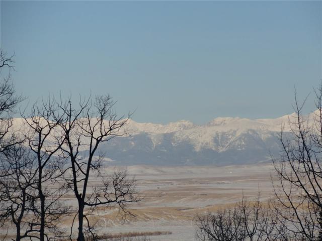 11873 Highway 14, Walden, CO 80430 (#5790488) :: Bring Home Denver