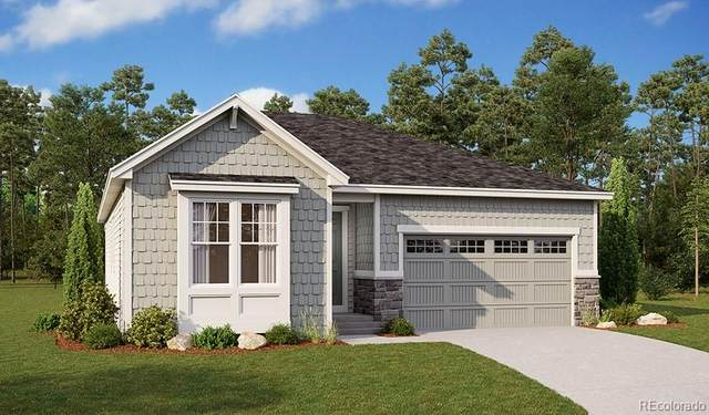 9123 Fraser River Street, Littleton, CO 80125 (#5792566) :: Kimberly Austin Properties