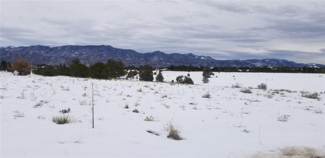 LOT 172 Mesa Antero No 4, Nathrop, CO 81236 (MLS #5795198) :: Bliss Realty Group