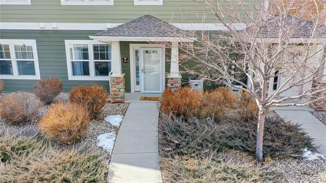 2515 Owens Avenue #101, Fort Collins, CO 80528 (#5795262) :: The Harling Team @ HomeSmart