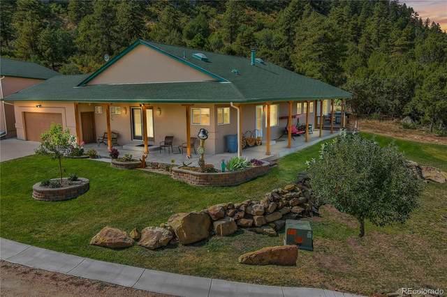 370 Adobe Creek Road, Wetmore, CO 81253 (#5797679) :: Wisdom Real Estate