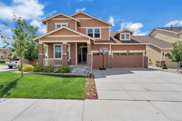 2751 Whitewing Way, Castle Rock, CO 80108 (#5798676) :: Relevate | Denver