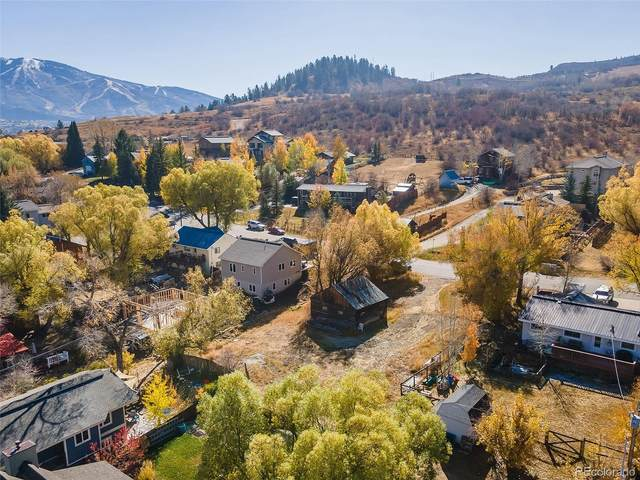 1260 Manitou Avenue, Steamboat Springs, CO 80487 (#5801818) :: James Crocker Team