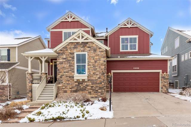 2988 Dragonfly Court, Castle Rock, CO 80109 (#5803628) :: The DeGrood Team