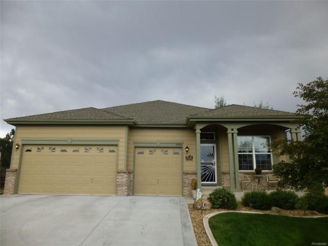 3790 Black Feather Trail, Castle Rock, CO 80104 (MLS #5806189) :: 8z Real Estate