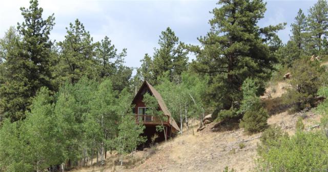 329 Vista De Agua Loop, Westcliffe, CO 81252 (#5806625) :: Bring Home Denver