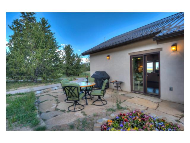 2567 Coil Drive, Fairplay, CO 80440 (MLS #5810764) :: 8z Real Estate