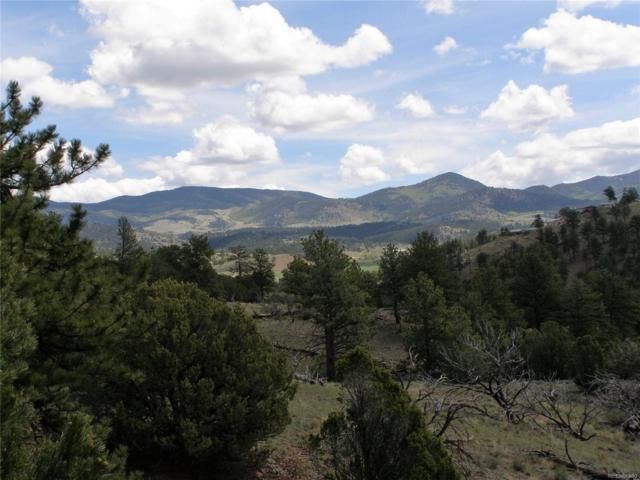 Lot 192 Antelope Valley Subs, Westcliffe, CO 81252 (MLS #5811036) :: 8z Real Estate