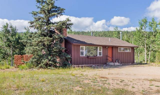 359 Klitowya Trail, Woodland Park, CO 80863 (#5811625) :: Own-Sweethome Team