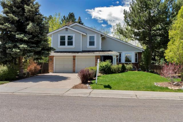 7701 S Hill Drive, Littleton, CO 80120 (MLS #5814276) :: 8z Real Estate