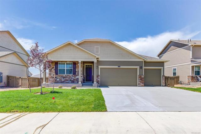 2265 Shadow Rider Circle, Castle Rock, CO 80104 (MLS #5814573) :: 8z Real Estate