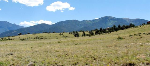 30800 Elk Horn Way, Buena Vista, CO 81211 (MLS #5815170) :: The Biller Ringenberg Group