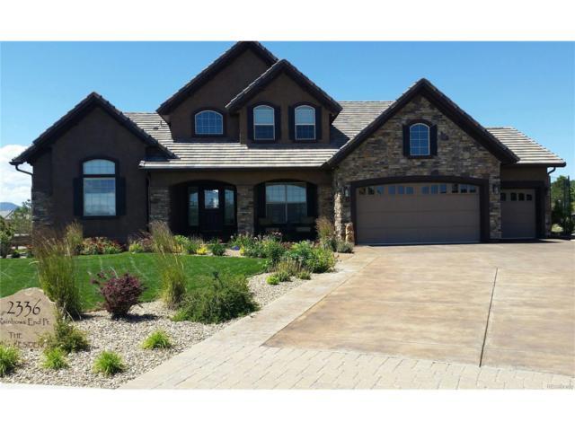 2336 Rainbows End Point, Colorado Springs, CO 80921 (MLS #5819448) :: 8z Real Estate