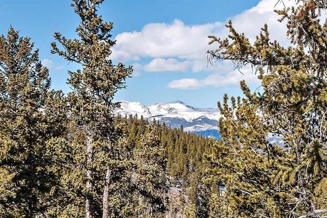 Highway 103, Idaho Springs, CO 80452 (#5822616) :: The DeGrood Team