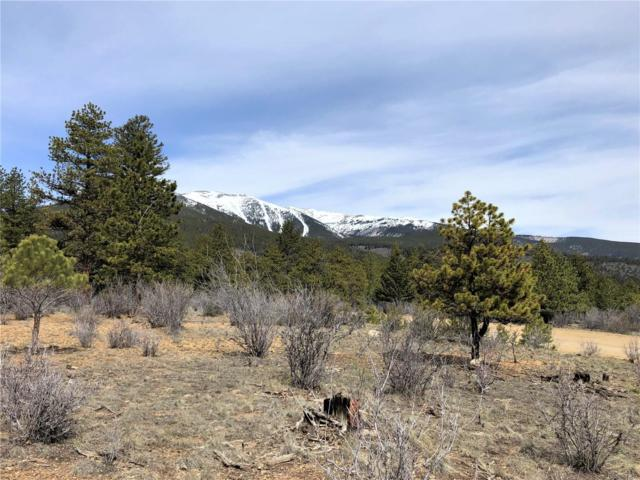30596 Timberline Drive, Buena Vista, CO 81211 (MLS #5824088) :: 8z Real Estate