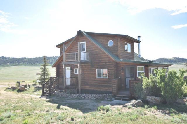 366 Goshawk Road, Como, CO 80432 (MLS #5824367) :: 8z Real Estate