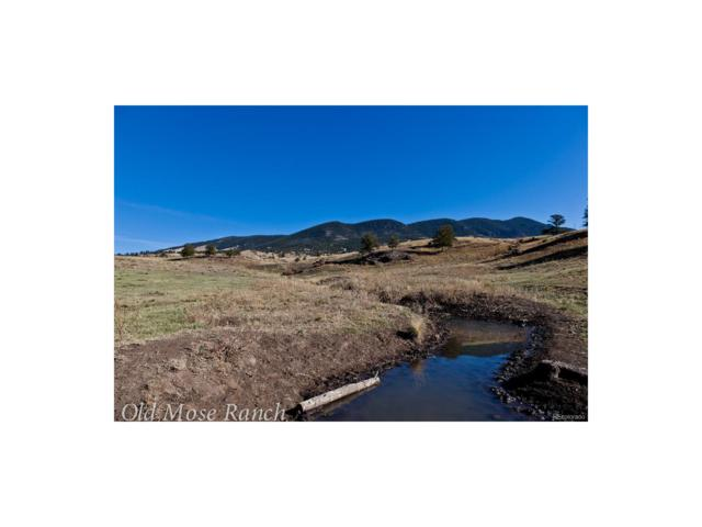 0 Hwy 9, Guffey, CO 80820 (#5825523) :: The DeGrood Team