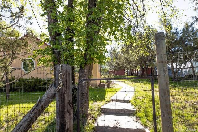 103 Pine Street, La Veta, CO 81055 (MLS #5833131) :: 8z Real Estate
