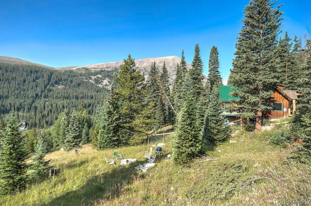 321 Monte Cristo Mine Road, Breckenridge, CO 80424 (#5835619) :: Wisdom Real Estate