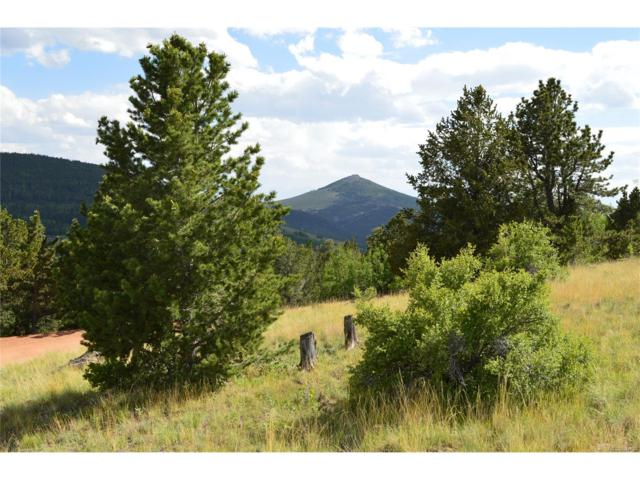 1368 Fairview Drive, Cripple Creek, CO 80813 (#5839861) :: Hometrackr Denver