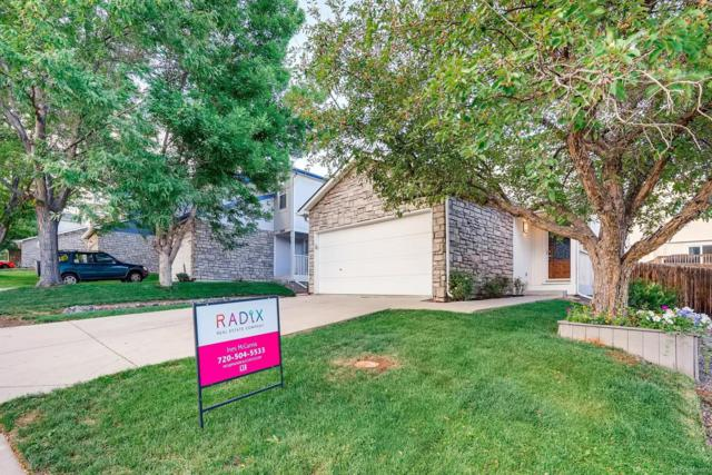 8068 Clay Drive, Westminster, CO 80031 (#5839972) :: Wisdom Real Estate