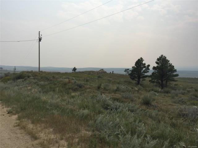 22099 Amethyst Road, Deer Trail, CO 80105 (#5840814) :: The Healey Group