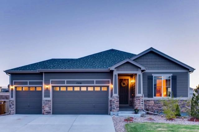 7338 Blue Water Drive, Castle Rock, CO 80108 (#5841478) :: Wisdom Real Estate