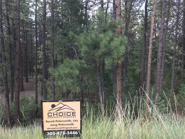 249 Territory Drive, Pine, CO 80470 (MLS #5843803) :: 8z Real Estate