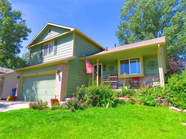 515 S 24th Avenue, Brighton, CO 80601 (#5844606) :: Bring Home Denver