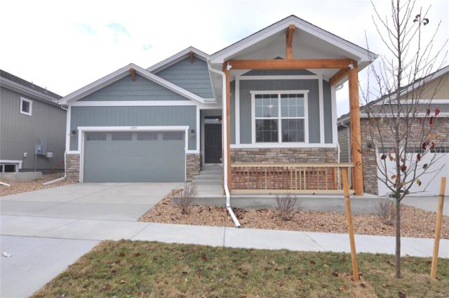 11494 Colony Loop, Parker, CO 80138 (#5845404) :: The HomeSmiths Team - Keller Williams