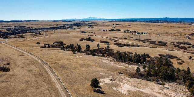 5595 E Willow Creek Road, Castle Rock, CO 80104 (#5846295) :: Colorado Home Finder Realty
