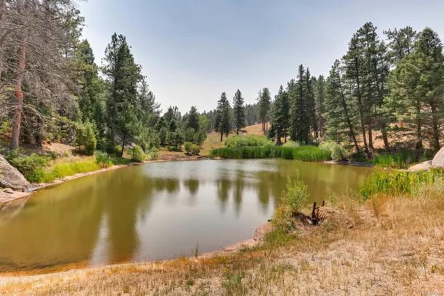 60 & 86 N County Highway 67, Sedalia, CO 80135 (#5846373) :: Colorado Home Realty