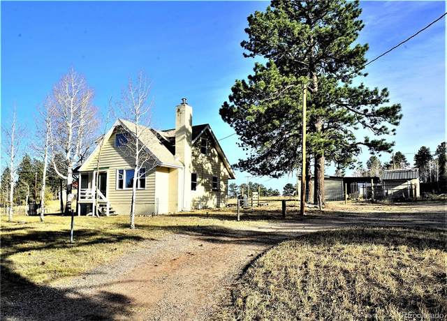 38 Fir Lane, Bailey, CO 80421 (#5847835) :: Mile High Luxury Real Estate