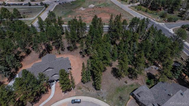 640 Chipmunk Drive, Woodland Park, CO 80863 (#5848039) :: Mile High Luxury Real Estate