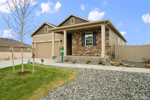 5491 Sandy Ridge Avenue, Firestone, CO 80504 (#5848835) :: The DeGrood Team