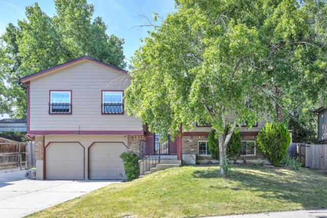 13732 W 67th Place, Arvada, CO 80004 (#5849556) :: Sellstate Realty Pros
