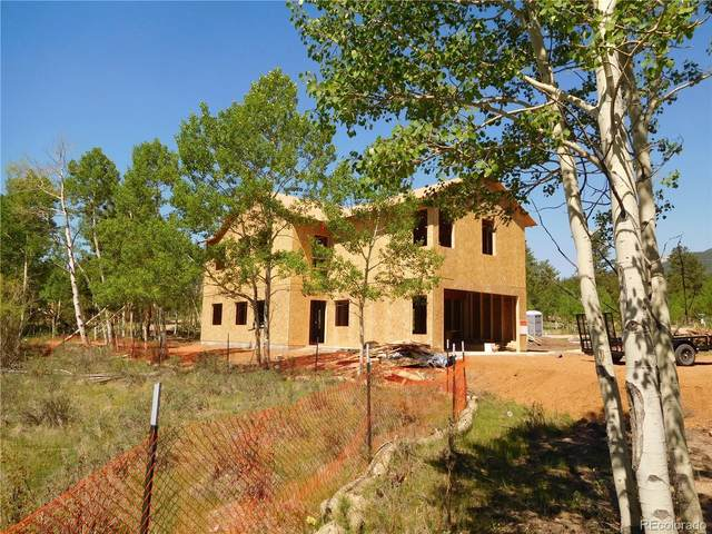 46 Sunset Drive, Bailey, CO 80421 (#5850018) :: The Colorado Foothills Team | Berkshire Hathaway Elevated Living Real Estate