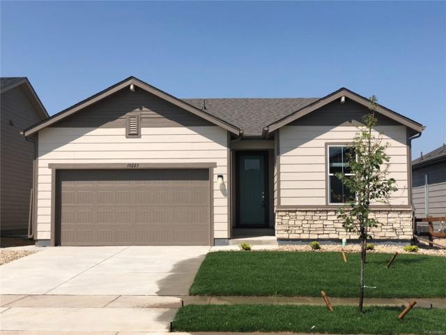 10223 W 11th Street, Greeley, CO 80634 (#5850456) :: The Peak Properties Group
