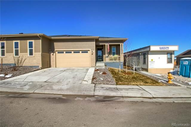 4221 Happy Hollow Drive, Castle Rock, CO 80104 (#5858270) :: The Gilbert Group