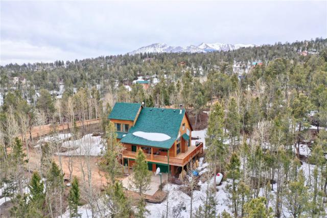 85 Potlatch Trail, Woodland Park, CO 80863 (#5862762) :: Harling Real Estate