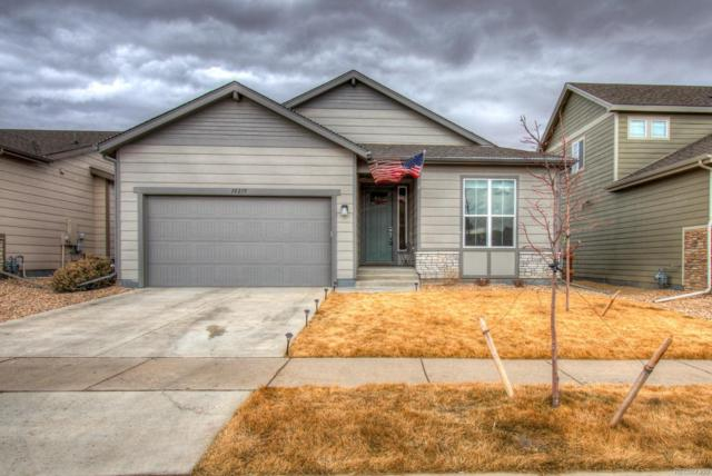 10219 W 11th Street, Greeley, CO 80634 (#5871138) :: The Heyl Group at Keller Williams
