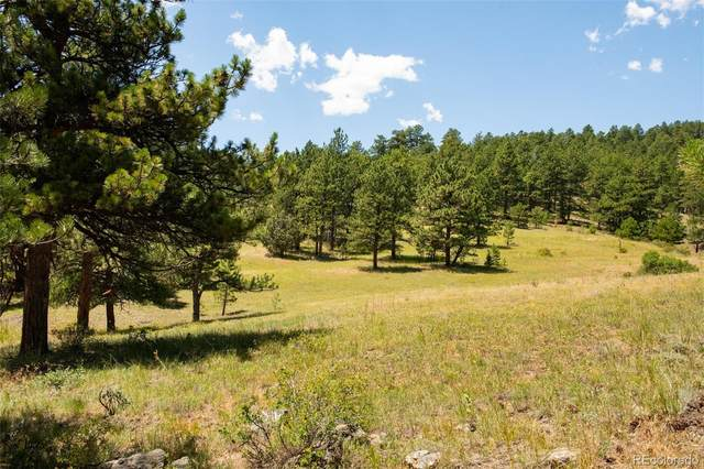 Lot 5 Legacy Ranch, Evergreen, CO 80439 (#5877809) :: The DeGrood Team
