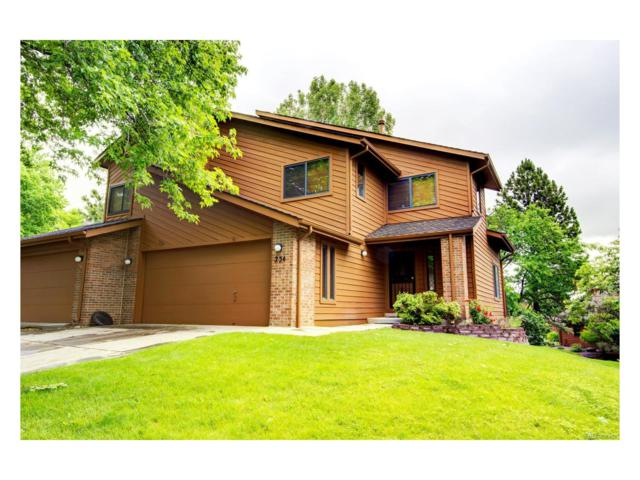 234 Zang Street, Lakewood, CO 80228 (#5878163) :: The Peak Properties Group