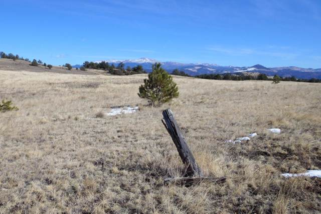 451 County Road 85, Guffey, CO 80820 (#5878632) :: The Healey Group